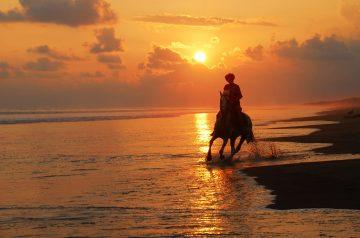 riding-adventures3