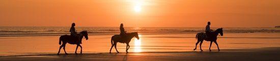 sunset horse costa rica