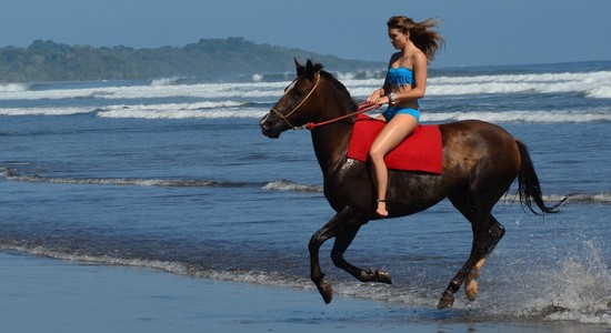 tico ride horse costa rica 2