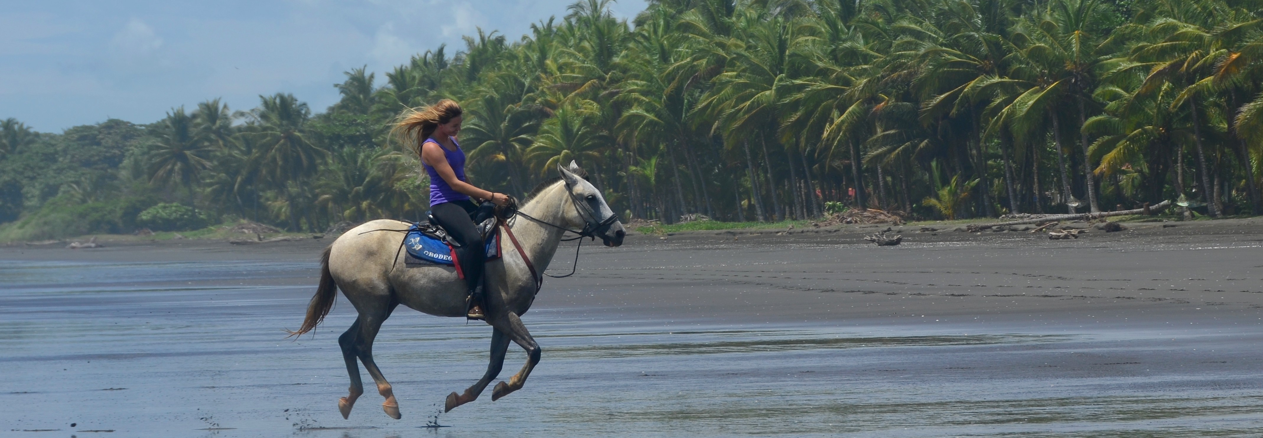 The Riding Adventure - Costa Rica horseback riding