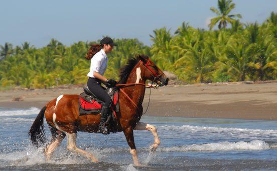 beach horseback riding Manuel Antonio - the riding adventure