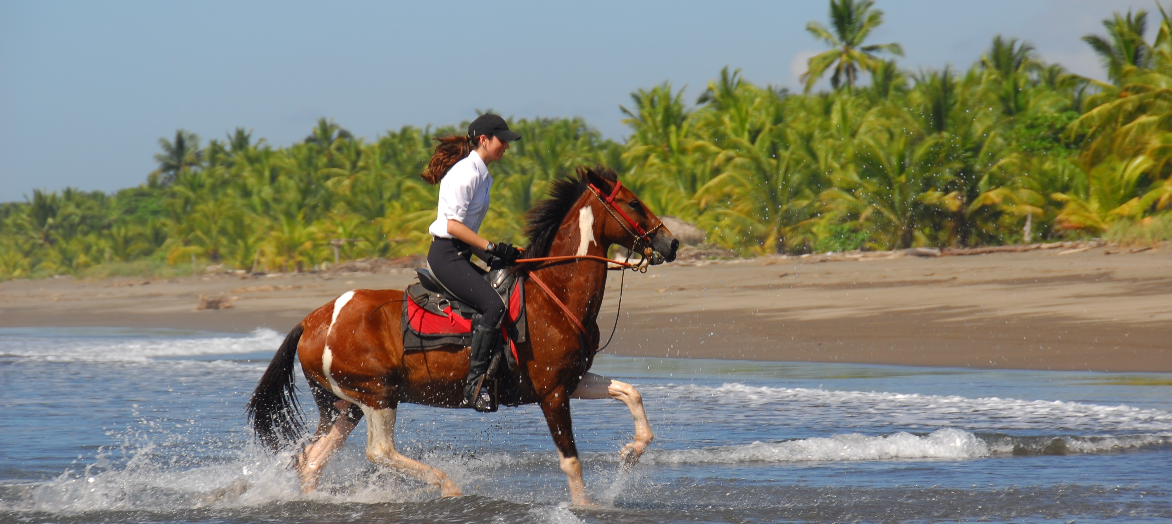 beach horseback riding Manuel Antonio - the riding adventure