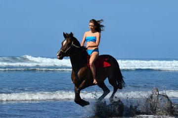 Discover The Best Horseback Riding Tours Of Costa Rica Since 2005 Our Goal Is To Provide You With A Unique And Unforgettable Experience
